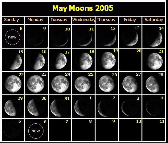 海外の月の満ち欠けを表したカレンダー。新月→上弦の月→満月の順で満ちていっている。