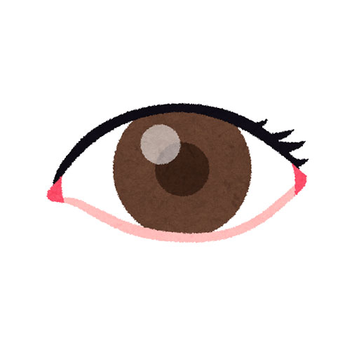 目そのもの