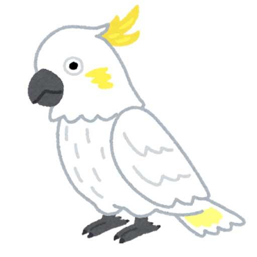 鸚鵡の千声